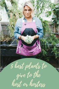 5 best plants to give to the host or hostess
