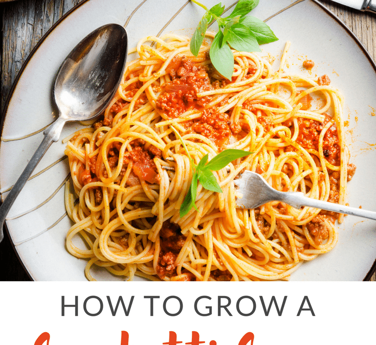 "How To Grow a ""Spaghetti Sauce"" Garden"